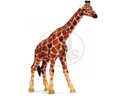 Schleich 14320 - Zvířátko - žirafa
