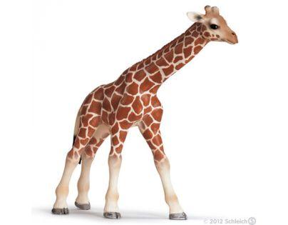 Schleich 14321 - Zvířátko - mládě žirafy