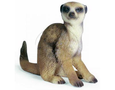 Schleich 14362 - Zvířátko - surikata sedící