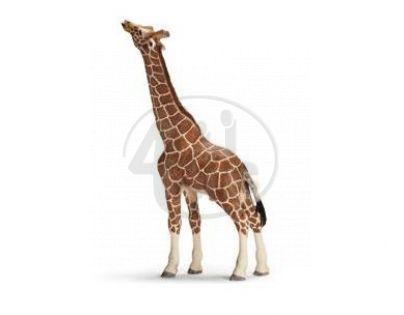Schleich 14389 - Zvířátko - samec žirafy pasoucí se