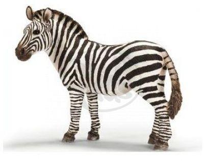 Schleich 14392 -Zvířátko - zebra samice