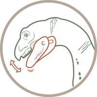 Schleich Carnotaurus 2