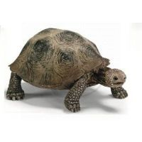 Schleich 14601 - Zvířátko - želva obrovská
