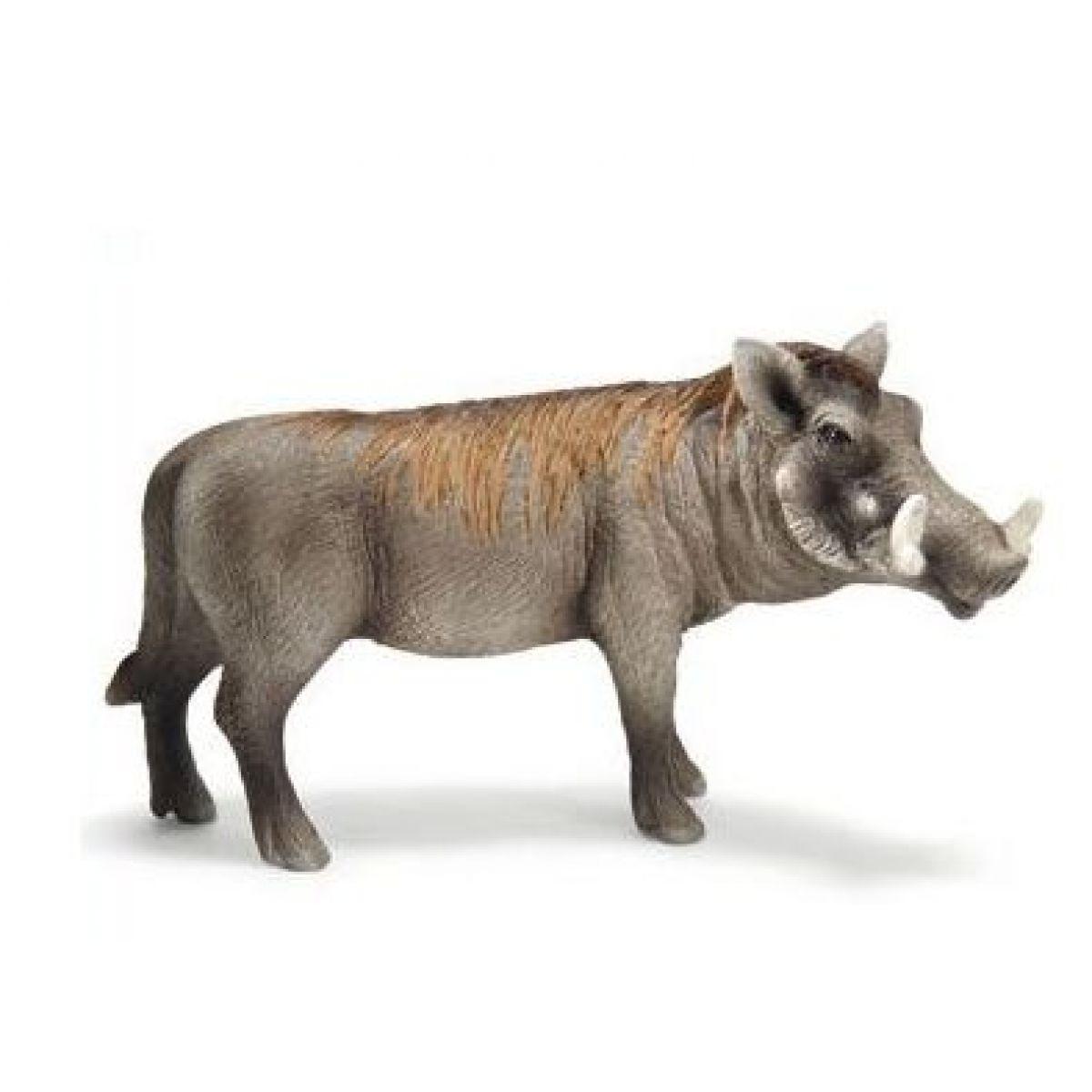 Schleich 14611 - Zvířátko - prase bradavičnaté - kanec