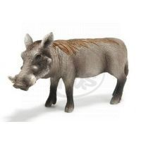 Schleich 14613 - Zvířátko - prase bradavičnaté - bachyně