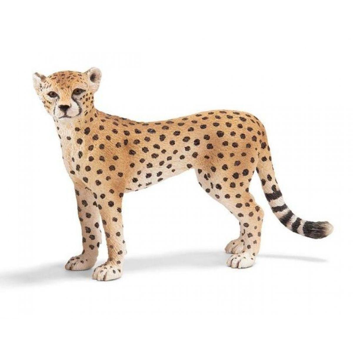 Schleich 14614 - Zvířátko - gepardí samice