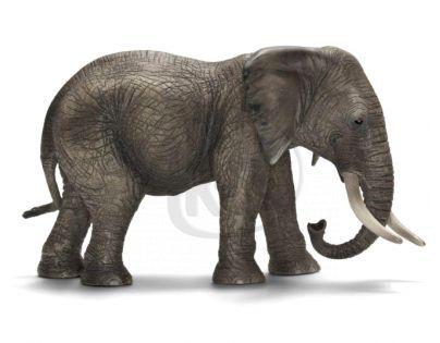Schleich Slonice africká