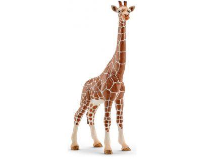 Schleich Žirafa samice