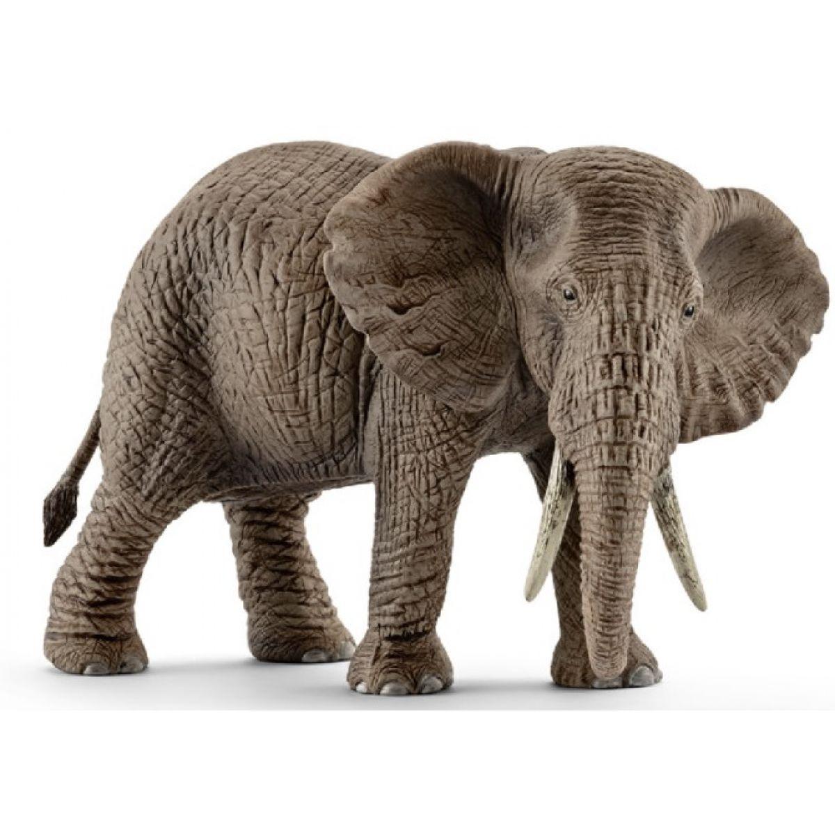 Schleich Slon africký samice