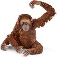 Schleich 14775 Orangutan samice