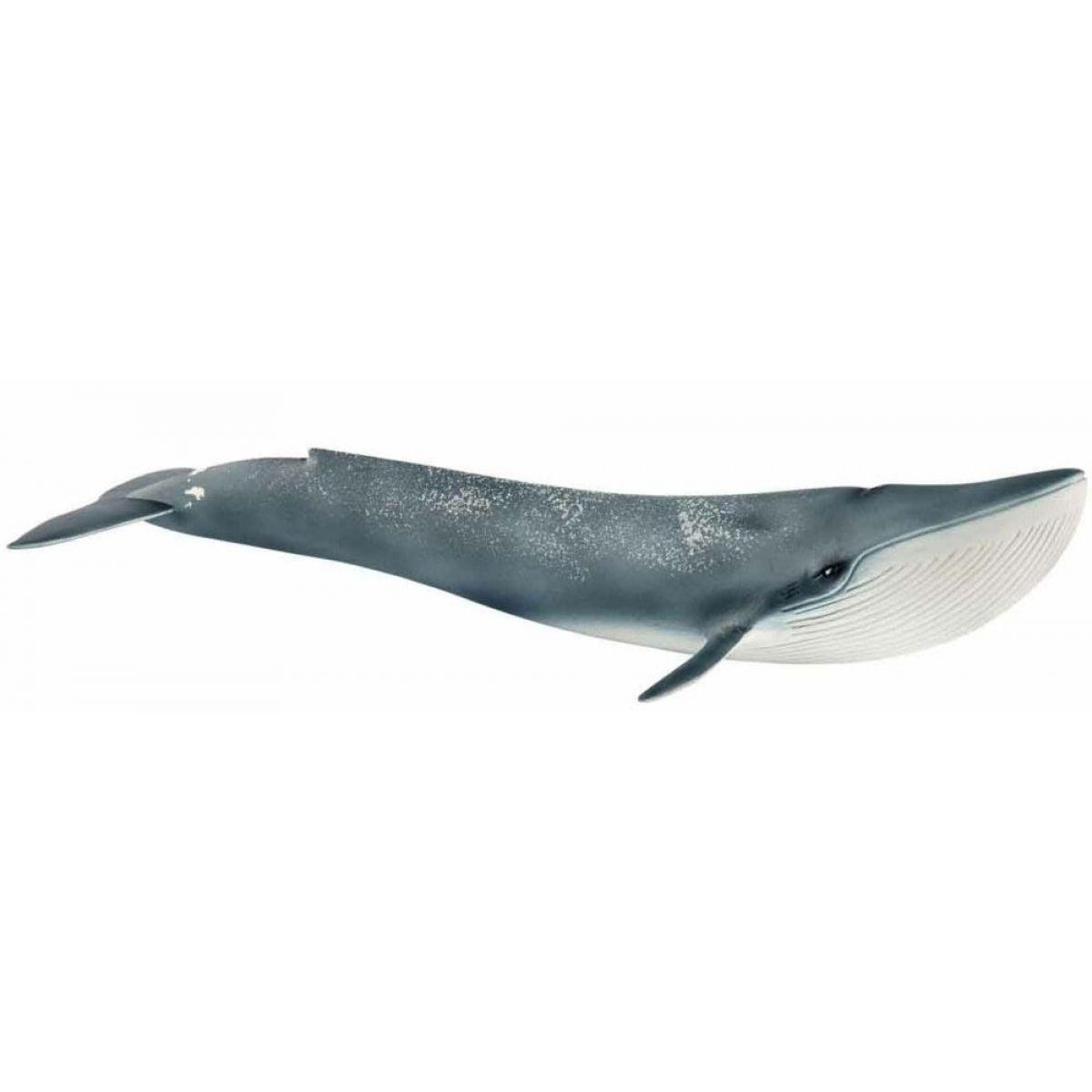 Schleich 14806 Modrá velryba
