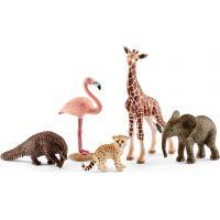 Schleich 42388 Divoká zvířata set 5ks