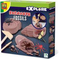 SES Vykopávky fosilií