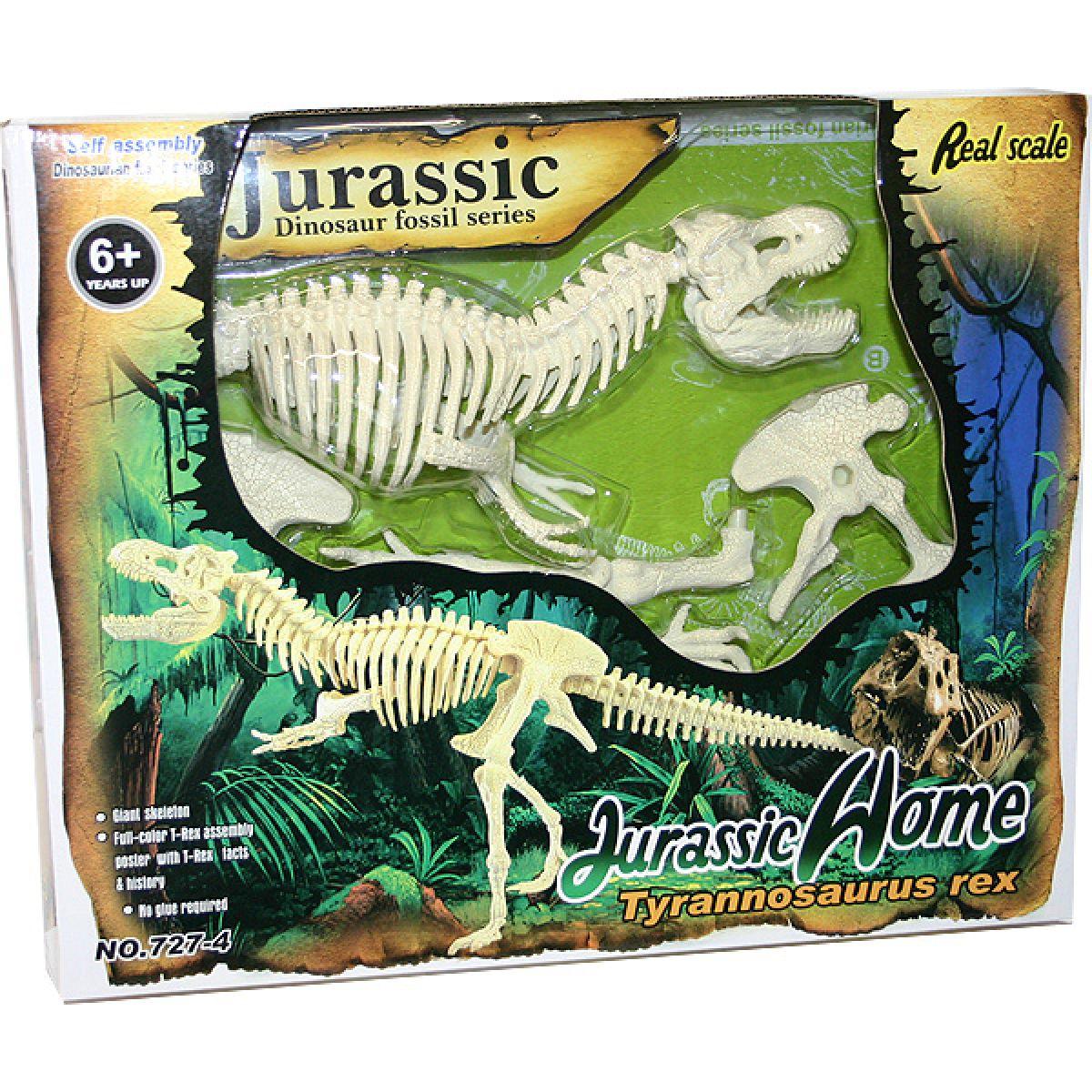 skeleton Tyranosaurus Rex