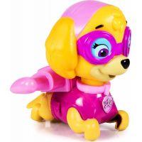 Spin Master Paw Patrol Plavací figurky Skye