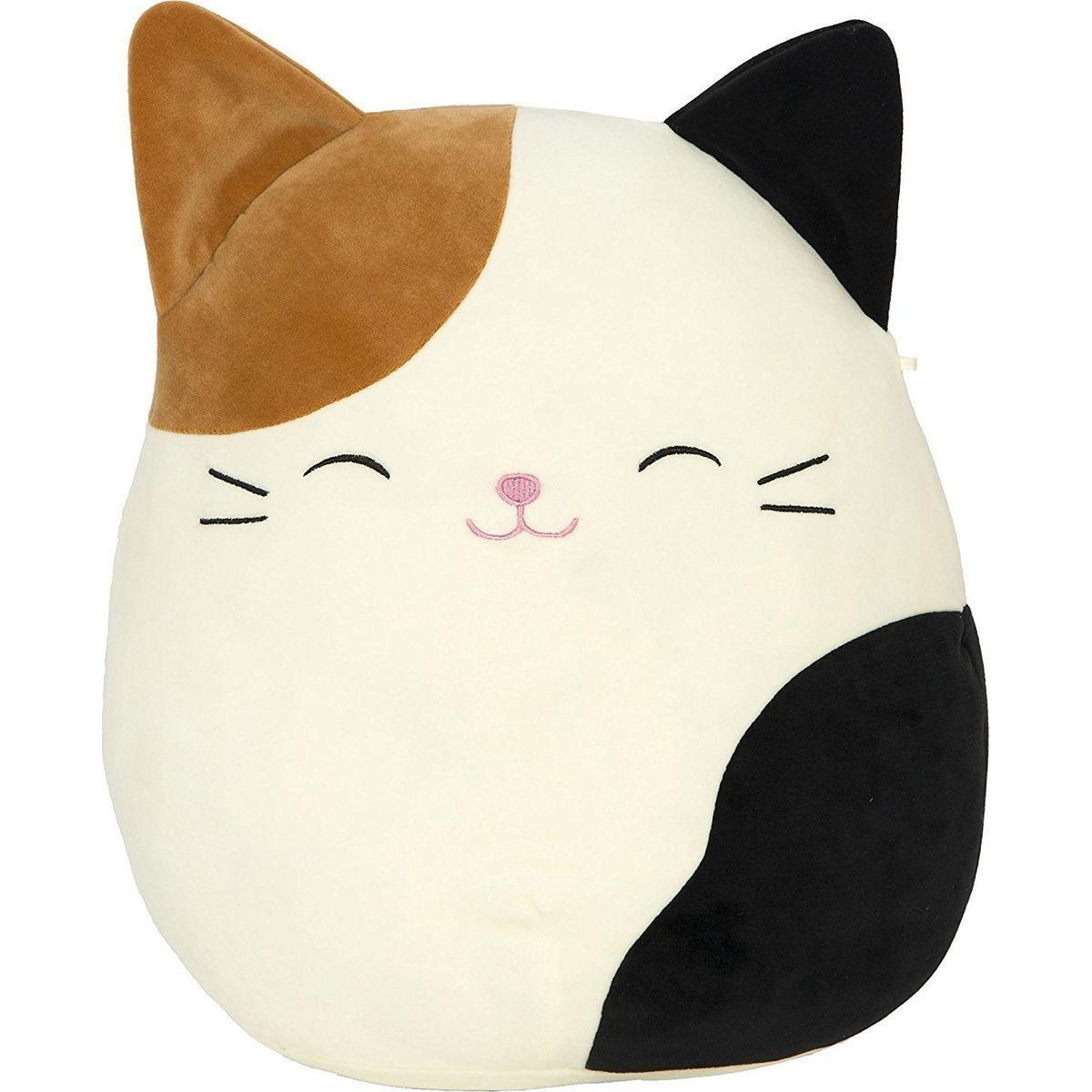 Squishmallows Kocour Cam