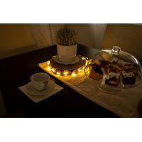 Marimex Struny svítící 100 LED svazek 10 ks 4