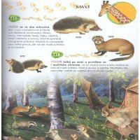 Sun Velká encyklopedie Zvířata v otázkách a odpovědích 2