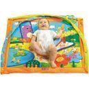 Tiny Love Hrací deka s hrazdou Slunečný den 5