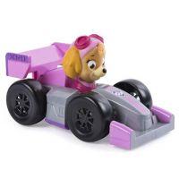 Spin Master Tlapková patrola autíčka Skye Roadster