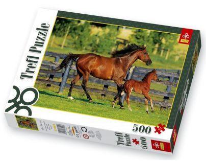 Trefl Puzzle Kůň s hříbětem 500 dílků