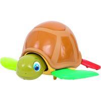 Imc Turtle Fun 3