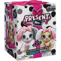 Present Pets Interaktivní štěňátka módní 6