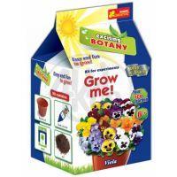 Vypěstuj si květinu Viola/Maceška