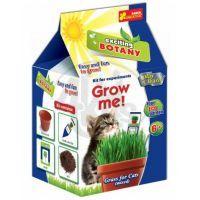 Vypěstuj si Tráva pro kočky
