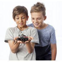 Wild Pets Pavouk - Creepster černý 3