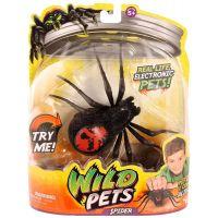 Wild Pets Pavouk II. - Creepster 4