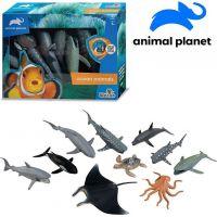 Made Zvieratká morská 10 ks mobilné aplikácie pre zobrazenie zvieratiek