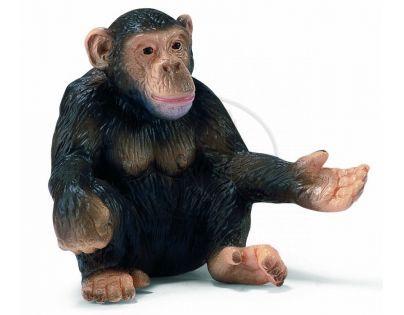 Schleich 14191 - Zvířátko - šimpanzice