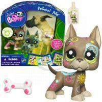Zvířátko s pohlednicí Littlest Pet Shop 4